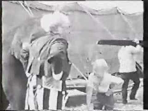 Circus Boy - Micky Dolenz