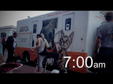 Stella's Spay Day With ASPCA Mobile Spay/Neuter Clinic