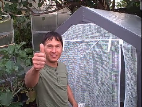 how to make a mini greenhouse for winter