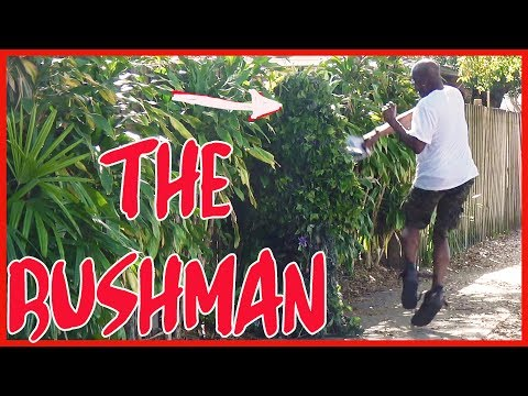 FUNNY - BUSHMAN - SCARE PRANK - 4k Video - 15 minutes long