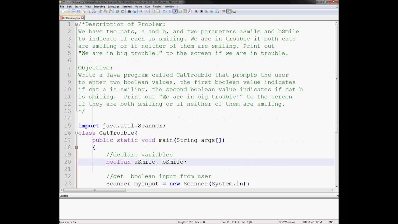 Exercise 3 Week 2 - Java Tutorial Cat Trouble IF Else Statements Boolean  Values