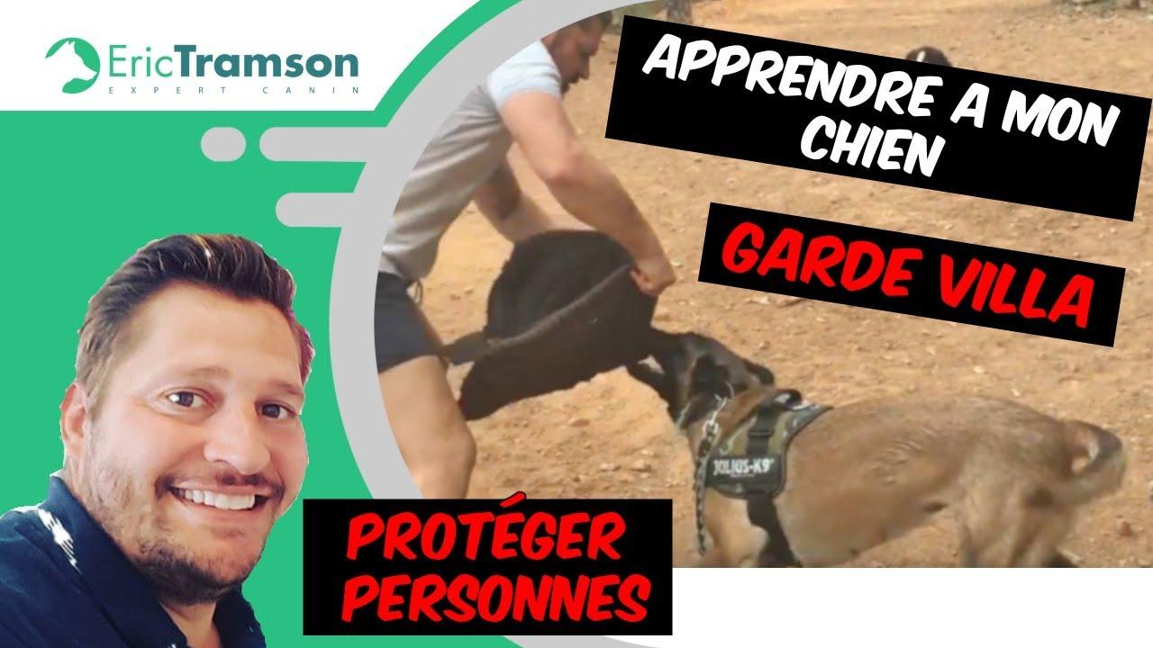 COMMENT APPRENDRE A MON CHIEN/ GARDE VILLA/PROTÉGER