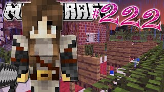 minecraft   setting up a wedding   diamond dimensions modded survival 222