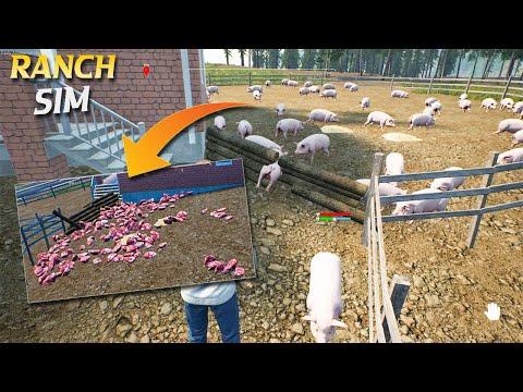 encounter 50 pigs - Ranch simulator | Niho plays |