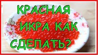 СДЕЛАТЬ КРАСНУЮ ИКРУ ДОМА!!!! ПРОСТОЙ Рецепт! Домашняя Кулинария!!!