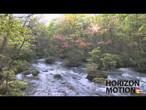 日本 青森 Aomori Prefecture , Japan 奧入瀨 森林 溪 溪水 樹 河 hm2630000290
