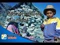Efectos de la pobreza en la infancia