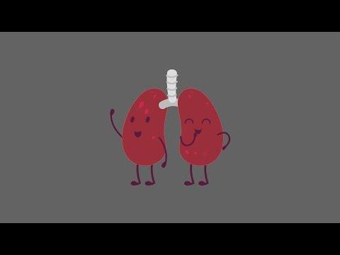 Kas vyksta organizme, kai metate rūkyti?