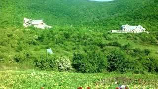 Sexavet Memmedov Segah Övlad nesiheti azeri mugam muğam mahni xalq mp3 müzik