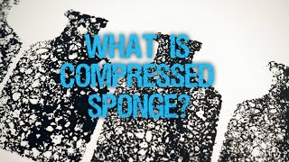 What is Compressed Sponge?