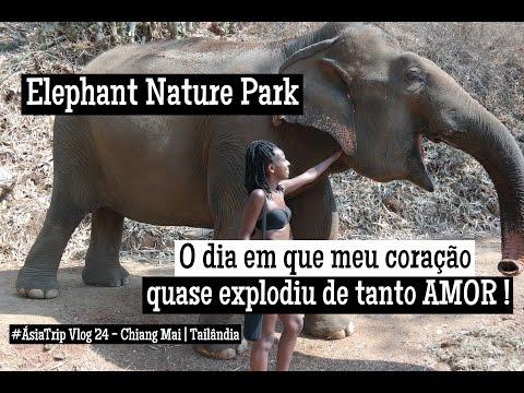 #ÁsiaTrip Vlog 24  Tailândia - Chiang Mai   Elephant Nature Park e um ♡ explodindo de tanto AMOR