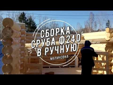 Сборка сруба дома из оцилиндрованного бревна 240 диаметра