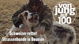Schweizer Bodybuilder rettet Strassenhunde in Bosnien | Von jung auf 100