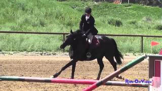 232S Joseph McKinley on Desert Pearl Training Horse Show Jumping Twin Rivers Ranch April 2014
