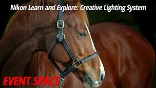 Nikon Learn and Explore: Creative Lighting System