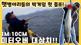 삐약삐약 바다낚시 첫 출조  미터오버 대삼치!!