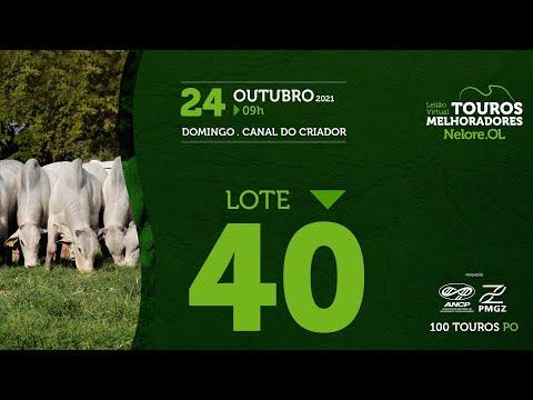 LOTE 40 - LEILÃO VIRTUAL DE TOUROS MELHORADORES  - NELORE OL - PO 2021