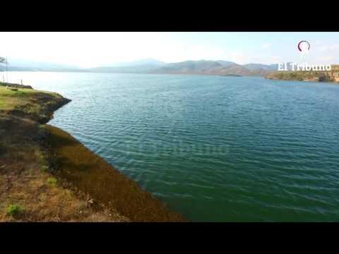 El dique Campo Alegre está invadido por un helecho acuático