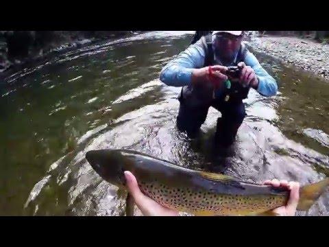 Fly Fishing New Zealand 2016
