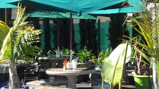 Dia De Pesca Fresh Fish Taco Restaurant, San Jose California Usa.mp4