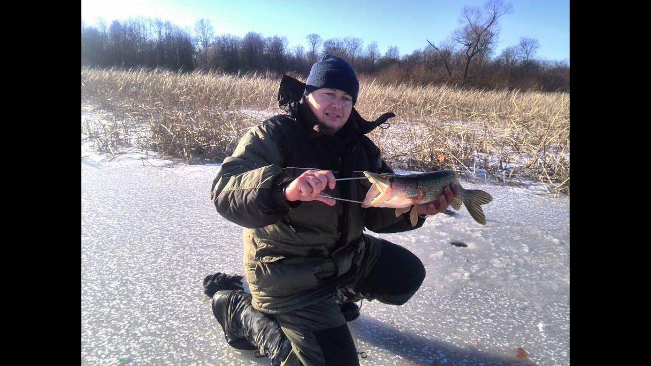 Рыбный ловля видео новое