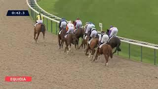 Vidéo de la course PMU PRIX NAVRATILOVNA