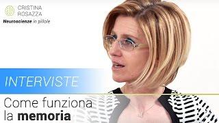 Come funziona la memoria - Stefania Fasano - Intervista #1