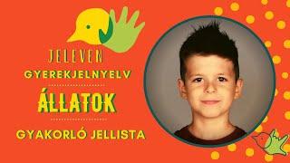 Jeleven online - GYAKORLÓ JELLISTA - TALÁLD KI! - Állatok témakör 2.