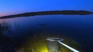 РЫБАЛКА С НОЧЁВКОЙ КАК ТОЛЬКО СТЕМНЕЛО И ОН КЛЮНУЛ рыбалка 2020