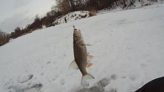 Зимняя рыбалка ловля голавля