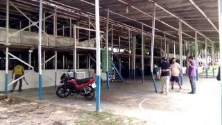 Finley Tea Factory: Tea processing plant