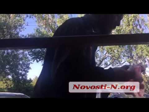 Видео 'Новости-N': В Николаеве бомж и бабушка не могли поделить урну