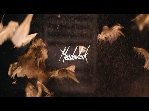 Meadowlark - Quicksand