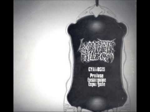 Lymphatic Phlegm - Entangled In Septic Gore (Last Days Of Humanity cover) mp3