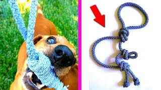 DIY - VERY SIMPLE toy for dogs from the rope | Nika crafts