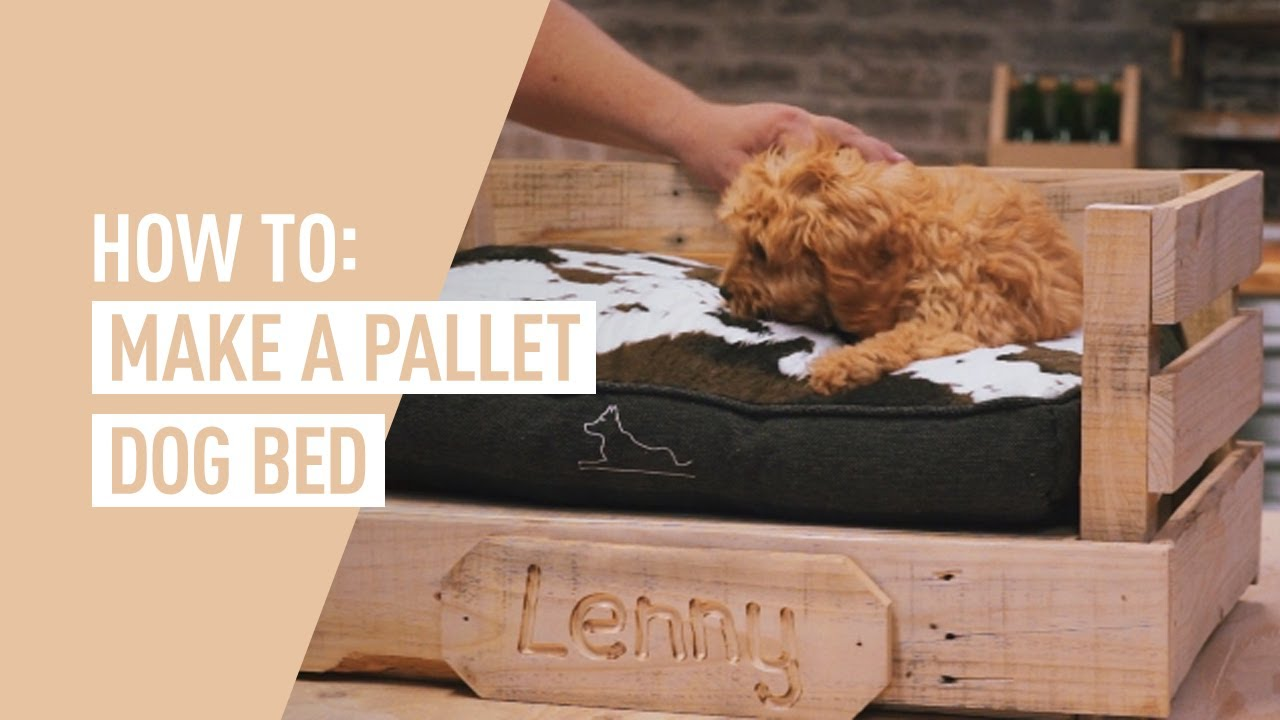 Diy Pallet Dog Bed Ozito Youtube