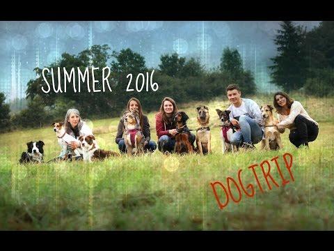 Summer DogTrip [DogTricks]