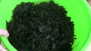 Чай из листьев мелисы мяты малинывишни и т д