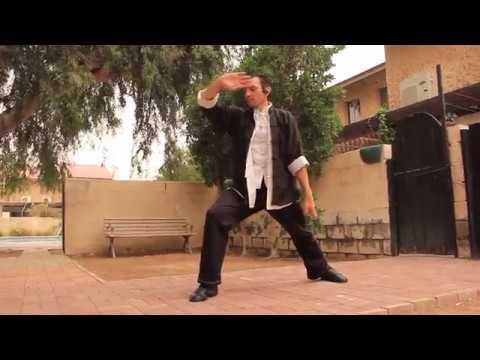 Tai Chi/ Kung fu: Inspiration