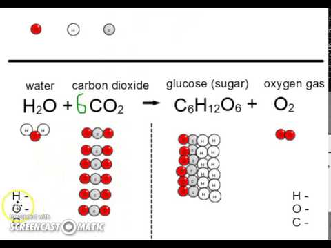 balanced equation for photosynthesis The equation that represents the process of photosynthesis is: 6co2+6h2o+light-&gtc6h12o6+6o2 photosynthesis is the process in plants to make their food this.