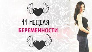 видео 11 неделя беременности