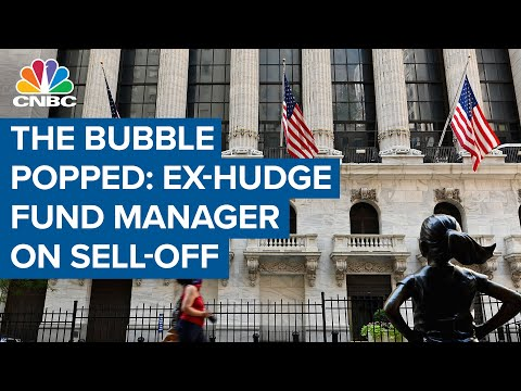 I think the bubble popped: Michael Novogratz on the market sell-off
