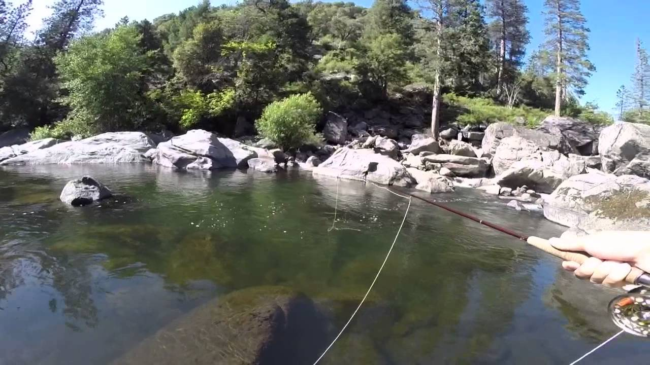 Fly fishing stanislaus river 6 7 14 youtube for Stanislaus river fishing