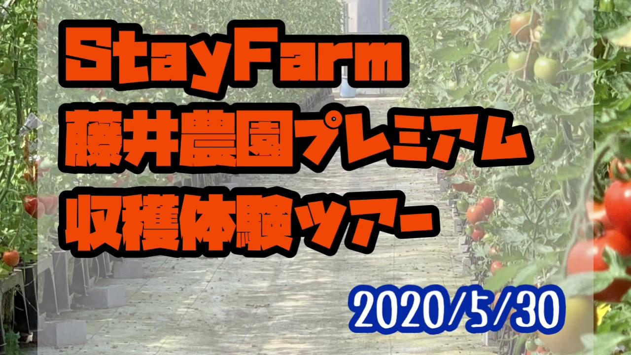 種まきから収穫までを経験できる農業体験イベント開催