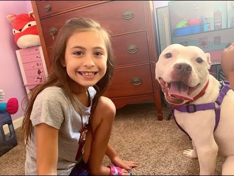 Rescued a PITBULL for my Daughter!