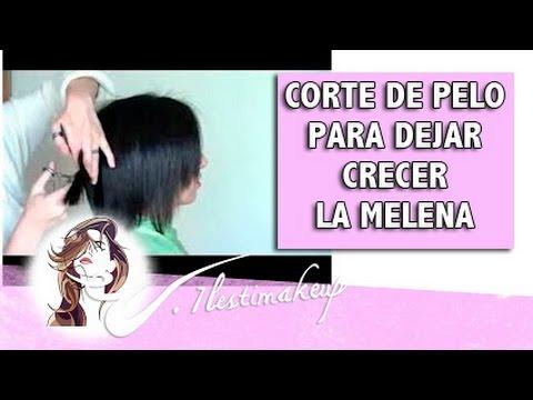 corte de pelo para dejar crecer melena. - youtube