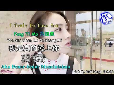 Aku benar-benar mencintaimu / Wo shi zhen de ai shang ni