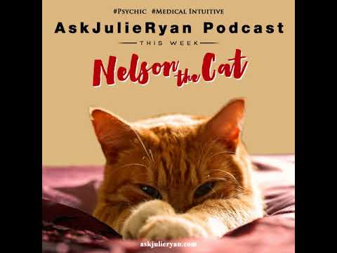 #085 Ask Julie Ryan Podcast - Psychic and Medical Intuitive - Nelson The Cat