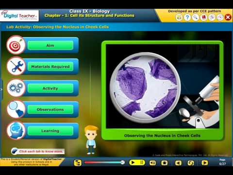 Cell its Structure and Functions, Biology - Learning App for Class 9 SSC