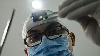 Российские ученые научились выращивать зубы - МИР24